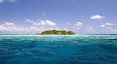 Eriyadu Island Resort Maldives For more details visit Travel Centre Maldives // www.travelcentremaldives.com // www.budgetresortsmaldives.com // info@tcmaldives.com