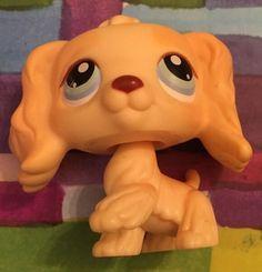Littlest Pet Shop Yellow Tan Cocker Spaniel w Blue Eyes 91 | eBay