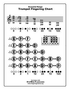 This free Baritone or Euphonium fingering chart, along with the flashcards, can help baritone/euphonium students learn their notes and fingerings. Partituras Trombone, Trumpet Fingering Chart, Trumpet Instrument, Play Trumpet, Trumpet Sheet Music, Band Rooms, Teaching Secondary, Band Nerd, Music Charts
