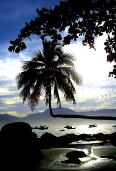 Ilha Grande - Rio de Janeiro, Brasil.
