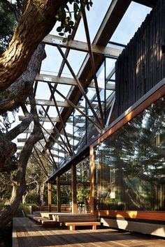 [ Under Pohutukawa_ HERBST Architects, NZ ] Extending to the trees, in what seems like a seamless relationship between nature and man-made
