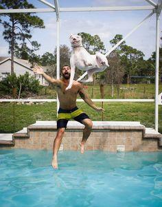 5. Le chien qui voulait absolument sauter dans la piscine et une pauvre souris qui va certainement se retrouver dans les griffes de la chouette