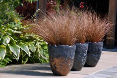 An odd number of planters with the same planting is a great focal point no matter the style or theme.