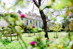Ballymaloe House, in Cork, is a family-run romantic country house hotel famous for its outstanding hospitality and superb food. Irish Landscape, Country House Hotels, Cork, Scenery, Romantic, Landscape, Corks, Romance Movies, Paisajes