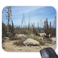 Aruba Landscape With Cactus Mouse Pads    •   This design is available on t-shirts, hats, mugs, buttons, key chains and much more    •   Please check out our others designs and products at www.zazzle.com/zzl_322881145212327*