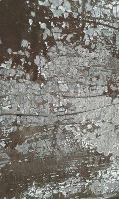 anca gray