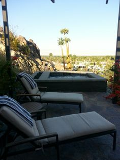 Outdoor living.  Palm trees