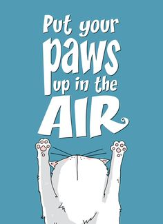 Put your paws up in the air !