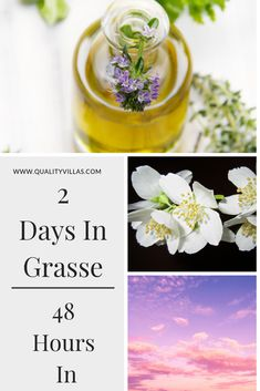 Considered the homeland of perfume, we have produced a guide on how best to spend a couple of days in this aromatic French Riviera town, Grasse. French Villa, French Riviera, Cool Places To Visit, Villas, Travel Inspiration, Europe, France, Day, Villa