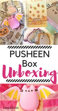 The Pusheen Box is a seasonal box of the cutest and exclusive Pusheen the Cat items. Read more to see what was inside the Fall box.