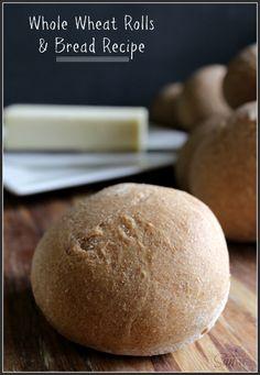Whole Wheat Rolls  Bread Recipe