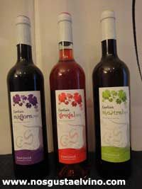 Upcoming Can Sais Wine Tasting | Webflakes