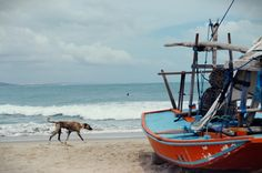 Iguape's Beach