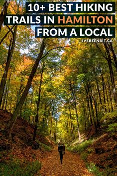 Hamilton, Ontario, Canada is a hiker's paradise! If you love waterfalls, lookouts & being in nature, you'll adore this list of the best Hamilton hiking trails! Includes Dundas Peak, Webster's Falls, Tew's Falls, Albion Falls & more! | #Ontario #Canada #Hiking | Hiking trails in Hamilton | Hikes in Hamilton | Walking trails in Hamilton | Things to Do in Hamilton | Where to hike in Ontario I Ontario Hiking Trails I Ontario Travel I Hike Ontario I Walking paths in Ontario | IveBeenBit.ca Ontario Travel, Ontario City, Canada Travel, Travel Usa, Travel Tips, Travel Abroad, Travel Goals, Travel Destinations, Albion Falls