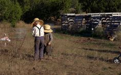 Nourishing Days: Real food and sustainability from our off-grid homestead.