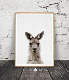 Kangaroo Print, Australian Animal Wall Art, Nursery Decor, Printable Kids Room Poster, Instant Digital Download, Australiana, Large Poster