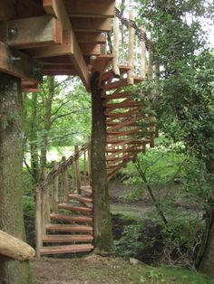 Exterior. brown wooden house on the tree with spiral brown wooden stairs . Inspiring House On Tree Design Give Marvelous Ideas For You