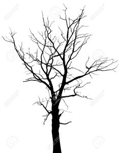 tree without leaves silhouette collection - Google Search