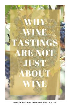 Contrary to popular belief wine tastings are not just about having a few glasses of high-quality alcohol. Here is why you should include it in your travels.