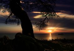 Light in the Dark by iD's on 500px