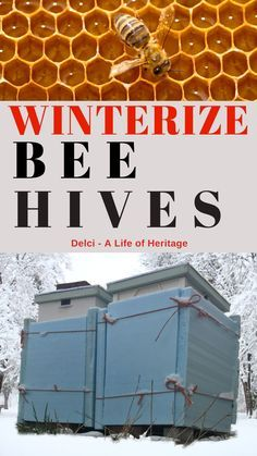 If you own bees in a really cold temperatures then it would be wise to prepare them for winter. Get them ready by keeping them warm and dry from the elements of snow, rain and wind. How To Start Beekeeping, Beekeeping For Beginners, Gardening For Beginners, Honey Bee Hives, Honey Bees, Backyard Beekeeping, Beekeeping Course, Raising Bees, Buzz Bee