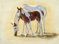 Paint Sample by Ann Hanson Oil ~ 9 x 12 Horse Drawings, Animal Drawings, Horse Canvas Painting, Horse Paintings, American Paint Horse, Horse Artwork, American Saddlebred, Baby Horses, Cowboy Art