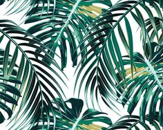 Green Natural Forest Tropical Leaves