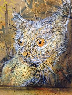 C215 - Barcelona by C215, via Flickr