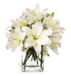 Le bouquet Célébration des lys FTD