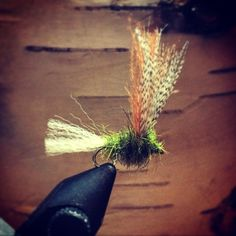 CDC Sparkle Dun Trout Fly (Tracy Lanktree)