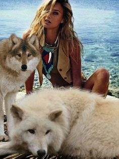 Home - Save gray wolf Wolf Photos, Wolf Pictures, Beautiful Wolves, Animals Beautiful, Native American Wolf, Wolves And Women, Dances With Wolves, Fantasy Wolf, Wolf Wallpaper
