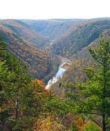 Pine Creek Gorge, commonly known at the Pennsylvania Grand Canyon, is located near Wellsboro in north-central Pennsylvania. The gorge stretches almost 50 miles long and is up to 1,000 feet deep. Pine Creek can be accessed via Leonard Harrison and Colton Point state parks. #FallinPA