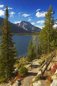 Jenny Lake Grand Teton - Bing Images