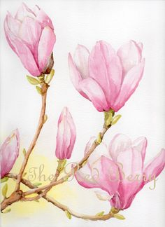 Flower watercolor Magnolias Floral Art Watercolor by TheRedBerry, €37.12