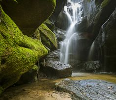 Dismals Canyon, Franklin County, Alabama.........this is anything but dismal!