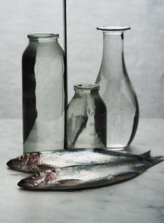 """shapes for bottles // """"bottles & fish ©Björn Abelin Painting Still Life, Still Life Art, Fish Tales, Still Life Photos, Art Corner, Vintage Fishing, Fish Art, Still Life Photography, New Artists"""