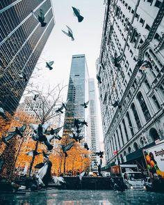 Portofolio Fotografi Urban - Sieh dir dieses Instagram-Foto von  #URBANPHOTOGRAPHY