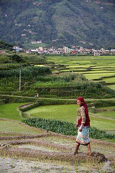 #3TN Travel tour Trek Nepal  Twitter: https://twitter.com/3tnepal Pinterest: https://www.pinterest.com/3tnepal/ Email: info@3tnepal.com  Viber: 9843779763