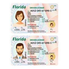 Template of driver card Florida by Alex Oakenman on