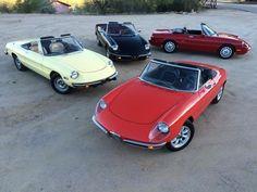 Alfa Romeo Spiders