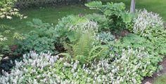 Vente plantes vivaces, graminées et bulbes - Pépinière Lepage