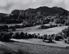 """flashofgod: """"Edward Weston, Untitled, Eel River Ranch, 1937 Today is my birthday with my gift to you: photos from my favorite photographers, like… Edward Weston. Because Edward Weston takes landscapes. Edward Weston, History Of Photography, Fine Art Photography, Urban Photography, Landscape Photography, Industrial Photographs, Henry Westons, Ansel Adams, Plein Air"""