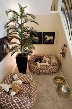 Turn a small closet into a dog bedroom! is part of Turn A Small Closet Into A Dog Bedroom Diy Projects For - her personal space by turning a small closet into a dog bedroom! Get more ideas about this project here Animal Room, Dog Room Design, Dog Room Decor, Dog Bedroom, Bedroom Ideas, Puppy Room, Dog Spaces, Small Spaces, Dog Rooms