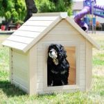 Eco-Friendly Bunk Dog House Small. Small dogs love this good for the environment house from serenityhealth.com
