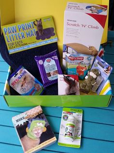Pet Treater Monthly Subscription Box Review - Special Edition Cat Box