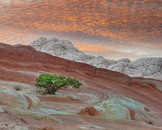 White Pocket, Arizona (psychedelic) dream ~ Atlas of Wonders