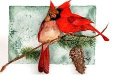Watercolor design of a pair of Cardinals