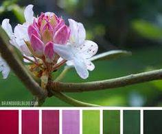 Image result for colour palette + tree