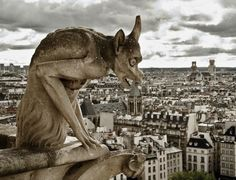Gargoyle, Notre Dame de Paris   Could these pertain to the religion that was studied?