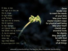 sir apirana ngata quotes - Google Search Treaty Of Waitangi, Maori Words, Maori Symbols, Proverbs Quotes, Maori Art, Naturopathy, Early Childhood Education, Beautiful Islands, Preschool Activities